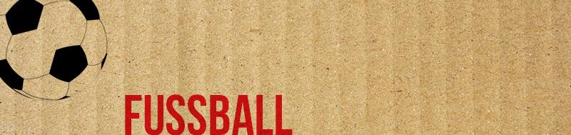 themnbild_fussball800